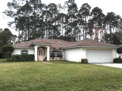 114 Breeze Hill Lane  Palm Coast, FL 32137 MLS# 220644