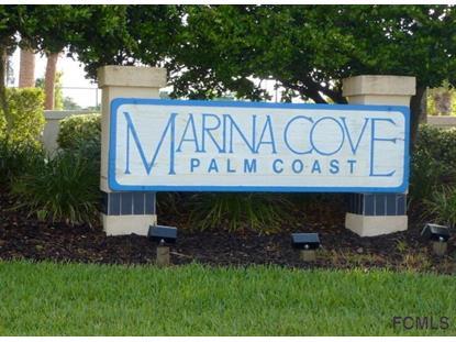 101 Rivers Edge Lane  Palm Coast, FL 32137 MLS# 220715