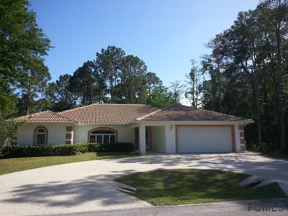 13 Rymsen Lane  Palm Coast, FL MLS# 220746