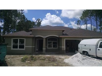13 Eric Drive  Palm Coast, FL MLS# 221492