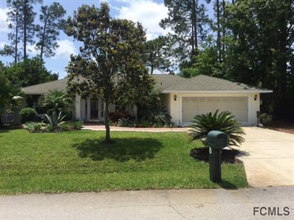 8 Egret Trail  Palm Coast, FL MLS# 221697