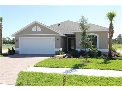 116 Park Place Circle  Palm Coast, FL MLS# 223487