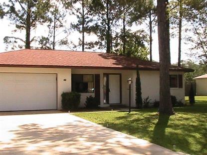 42 East Diamond Drive  Palm Coast, FL 32164 MLS# 223560