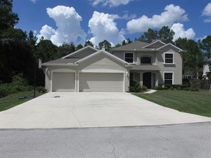 71 Slumber Meadow Trail  Palm Coast, FL MLS# 223635