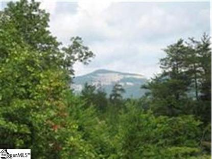 Lot # 8 Stone Valley Circle Pickens, SC MLS# 1235665