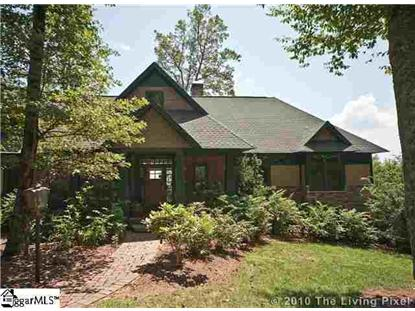 301 Blazing Star Trail Landrum, SC MLS# 1259699