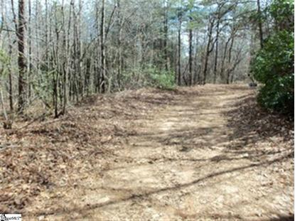 Pleasant Grove  Road Pickens, SC MLS# 1275233