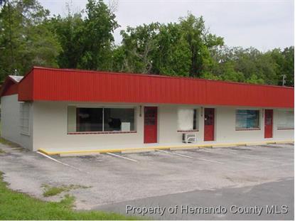 712 PONCE DE LEON BLVD  Brooksville, FL 34601 MLS# 2120317