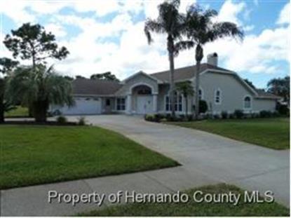 14592 LINDEN DR , Spring Hill, FL