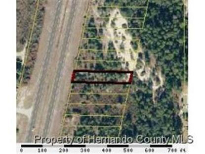 7144 COMMERCIAL WAY , Weeki Wachee, FL