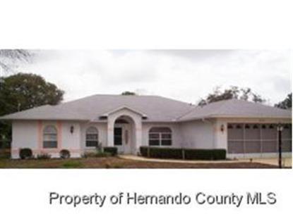 10200 HORIZON DR , Spring Hill, FL