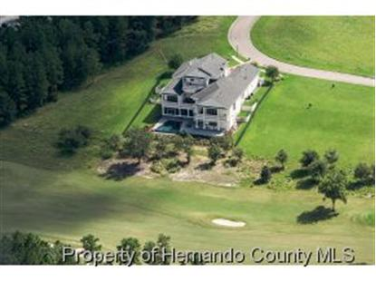 0 GRAND SUMMIT DR , Brooksville, FL