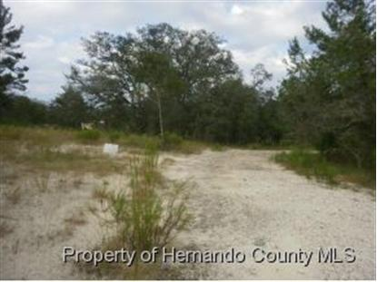 Address not provided Brooksville, FL MLS# 2147281