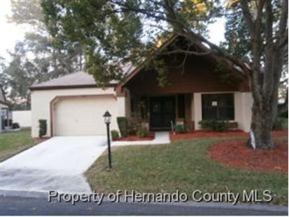 6697 PIN OAK CT  Spring Hill, FL MLS# 2150042