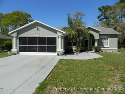 8421 Dunnellon Road Weeki Wachee, FL MLS# 2151122