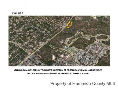 5177 Lecanto Highway  Beverly Hills, FL MLS# 2152031