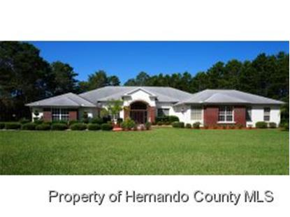 11137 WOODLAND WATERS BLVD  Brooksville, FL MLS# 2153054