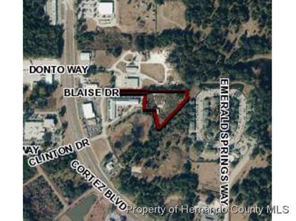 0 BLAISE DR  Brooksville, FL 34601 MLS# 2153455