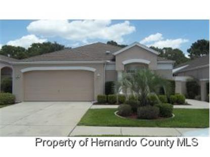 384 ROYAL PALM WAY  Spring Hill, FL MLS# 2153487
