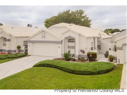 1029 CASTILLE DR  Spring Hill, FL MLS# 2155402