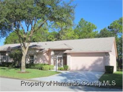 11533 Baronwood Court  Hudson, FL MLS# 2155447