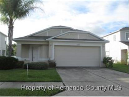 12641 WHITE BLUFF RD  Hudson, FL MLS# 2155679