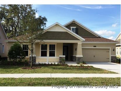 Address not provided Brooksville, FL MLS# 2156250