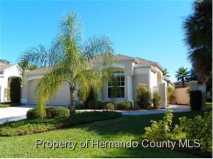 206 ROYAL PALM WAY  Spring Hill, FL MLS# 2156414