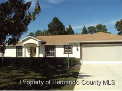 8255 Eric St, Spring Hill, FL 34606