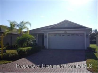 5393 Cappleman Loop  Brooksville, FL 34601 MLS# 2156457