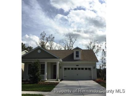Address not provided Brooksville, FL MLS# 2156554