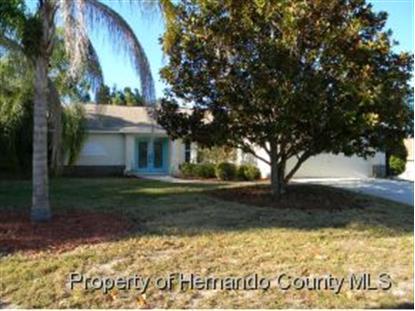 12457 GROVELAND ST  Spring Hill, FL MLS# 2156630