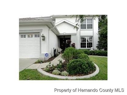 4381 CALIQUEN DR  Brooksville, FL MLS# 2156720
