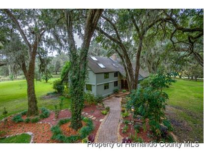 7125 GRIFFIN RD  Brooksville, FL MLS# 2156978