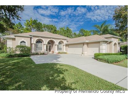 5331 LEGEND HILLS LN  Brooksville, FL MLS# 2156991
