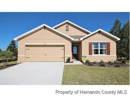 14490 Finsbury Drive  Brooksville, FL MLS# 2157436