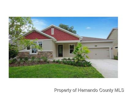 Address not provided Brooksville, FL MLS# 2159634