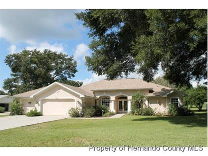 9971 DOMINGO DR  Brooksville, FL MLS# 2159769