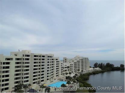 6035 SEA RANCH DRIVE  Hudson, FL MLS# 2160777