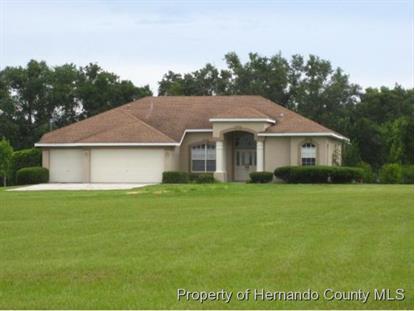23075 Hayman Rd  Brooksville, FL MLS# 2162000