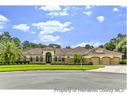 5498 FIRETHORN PT  Brooksville, FL MLS# 2163680