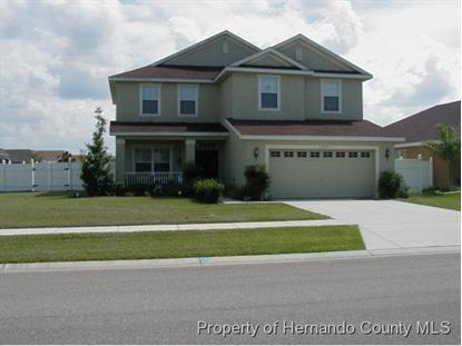 31034 Walter Lily Drive  Brooksville, FL MLS# 2165476