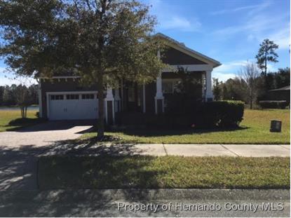 19482 LILY POND CT  Brooksville, FL 34601 MLS# 2167886