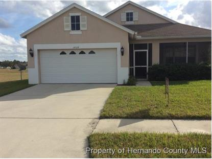 14324 HOLLY HAMMOCK LN  Brooksville, FL MLS# 2167931