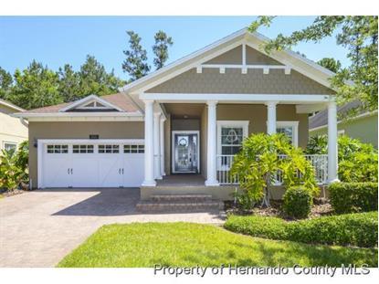 19529 LILY POND CT  Brooksville, FL MLS# 2168307