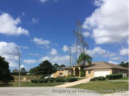 13375 MAUNA LOA CT  Brooksville, FL MLS# 2169116