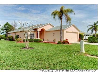 18433 Fairway Green Drive  Hudson, FL MLS# 2169241