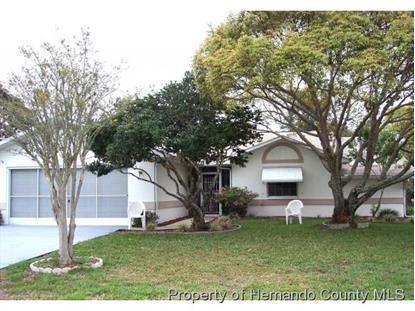 12617 SHADOW RIDGE BLVD  Hudson, FL MLS# 2169456
