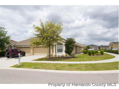 3915 CROSSLINE DR  Spring Hill, FL MLS# 2170644