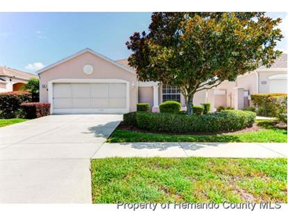 228 ROYAL PALM WAY  Spring Hill, FL MLS# 2172114